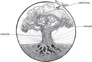 Дерево переживаний: определите свои цели
