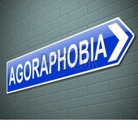 Агорафобия – навязчивый страх человека и боязнь открытого пространства.