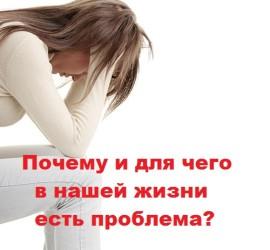 Почему и для чего в нашей жизни есть проблема?