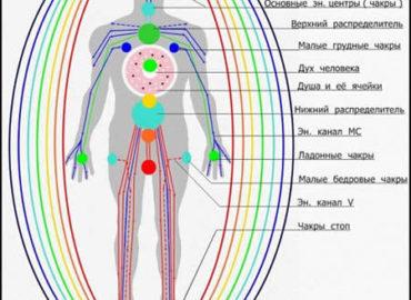 Что такое меридианы человека?