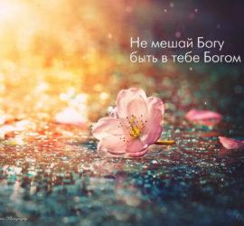 Случай – это псевдоним Бога, когда он не хочет подписываться своим именем