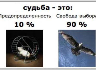 Свобода или предопределенность?