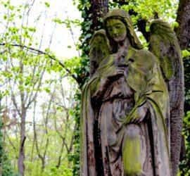 Правила поведения на кладбище — как вести себя на кладбище.