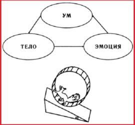Основная, крайне важная функция ума — не просто мыслить, а переживать различные эмоции.