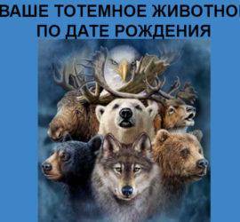 Славянский зодиак…