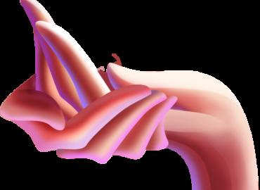 Техники гармонизации отношений с родителями: «Рука Матери/Отца» и «Рука Матери и Отца»