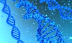 Что такое генетическая травма?